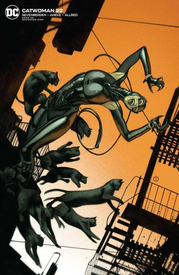 DC - Catwoman # 22 Tedesco Variant
