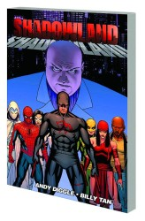 Marvel - Shadowland TPB