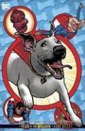 DC - Superman (2018) # 14 Hughes Variant